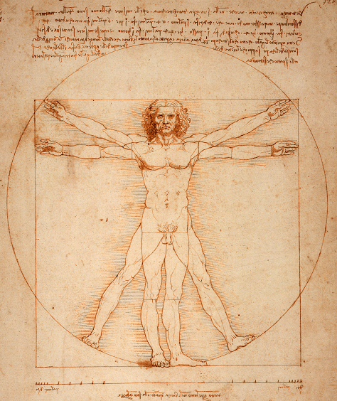 Vitruvian_Man_by_Leonardo_Da_Vinci_small